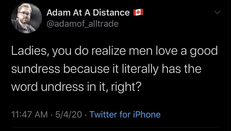 Text - Adam At A Distance D @adamof_alltrade Ladies, you do realize men love a good sundress because it literally has the word undress in it, right? 11:47 AM · 5/4/20 · Twitter for iPhone