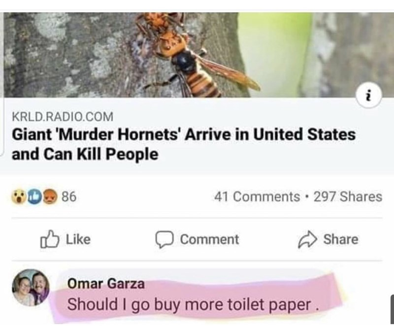 Text - KRLD.RADIO.COM Giant 'Murder Hornets' Arrive in United States and Can Kill People WO9 86 41 Comments 297 Shares O Like Comment Share Omar Garza Should I go buy more toilet paper