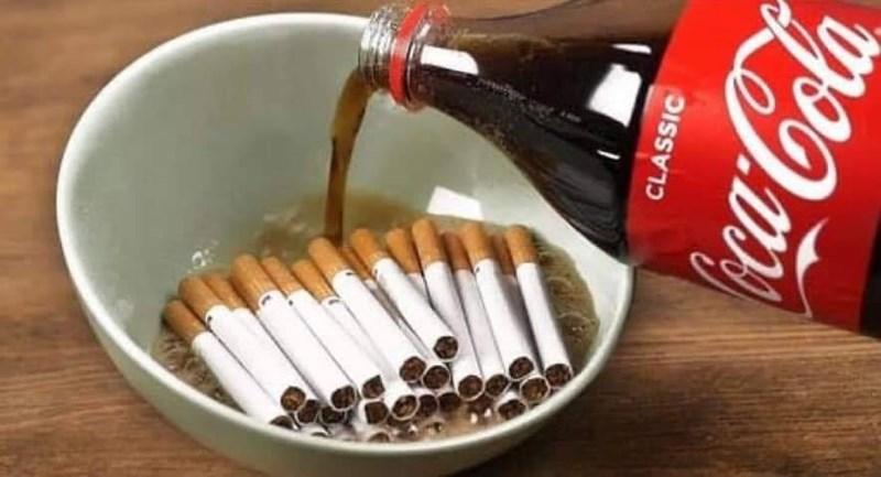 Cola - CLASSIC Cocaola