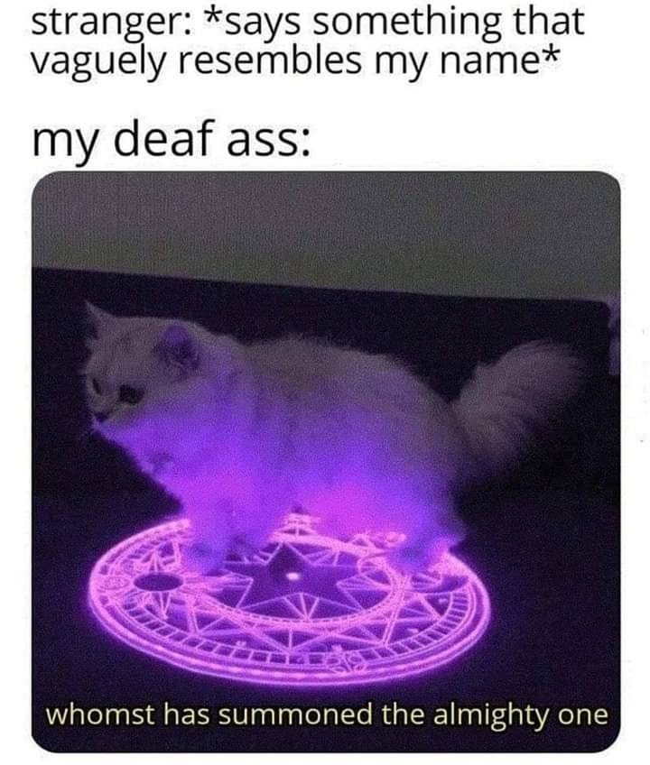 Cat - stranger: *says something that vaguely resembles my name* my deaf ass: whomst has summoned the almighty one