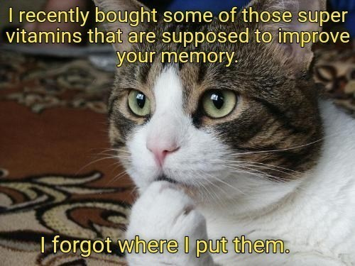 Cat - I recently bought some of those super vitamins that are supposed to improve your memory. I forgot where I put them.