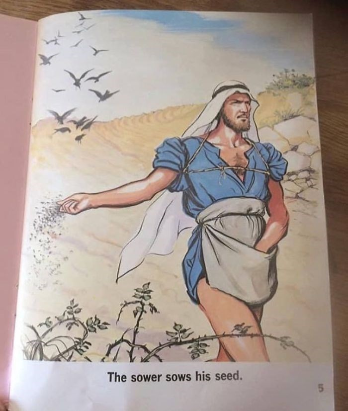 Illustration - The sower sows his seed.