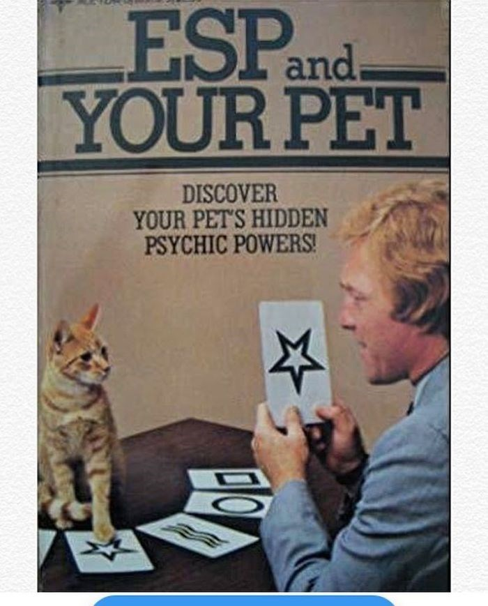 Text - ESPand YOUR PET I. DISCOVER YOUR PET'S HIDDEN PSYCHIC POWERS!