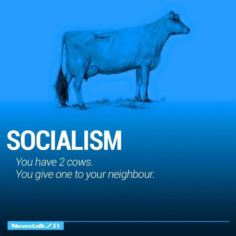 Water - SOCIALISM You have 2 COWS. You give one to your neighbour. NewstalkZB