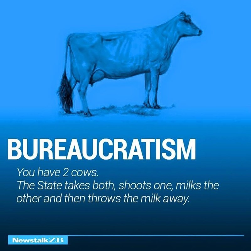 Water - BUREAUCRATISM You have 2 cows. The State takes both, shoots one, milks the other and then throws the milk away. NewstalkZB