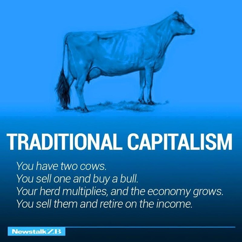 Water - TRADITIONAL CAPITALISM You have twO cowS. You sell one and buy a bull. Your herd multiplies, and the economy grows. You sell them and retire on the income. NewstalkZB