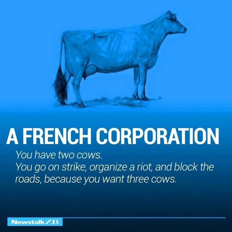 Bovine - A FRENCH CORPORATION You have twO COWS. You go on strike, organize a riot, and block the roads, because you want three cows. NewstalkZB
