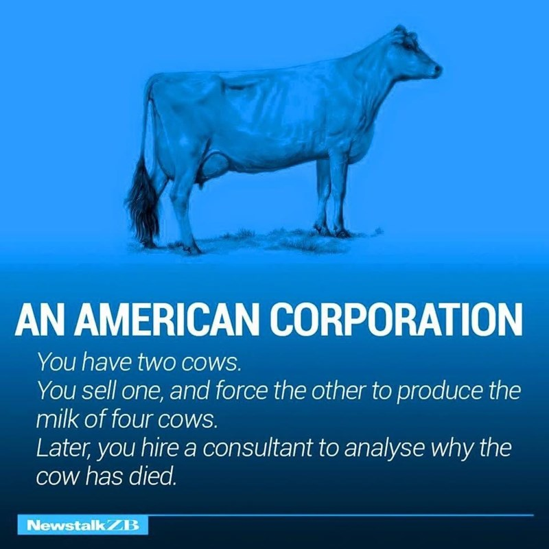 Water - AN AMERICAN CORPORATION You have twO COWS. You sell one, and force the other to produce the milk of four cowS. Later, you hire a consultant to analyse why the Cow has died. Newstalk ZB