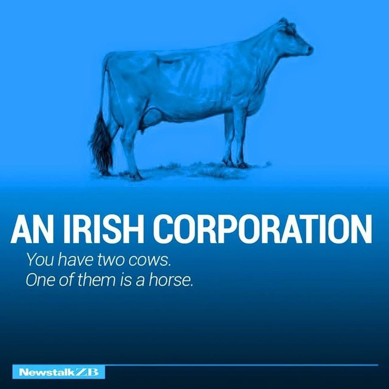 Water - AN IRISH CORPORATION You have two COWS. One of them is a horse. NewstalkZB