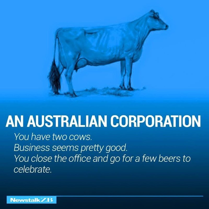 Water - AN AUSTRALIAN CORPORATION You have twO COWS. Business seems pretty good. You close the office and go for a few beers to celebrate. NewstalkZB
