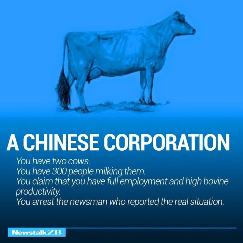 Water - A CHINESE CORPORATION You have two COwS. You have 300 people milking them. You claim that you have full employment and high bovine productivity. You arrest the newsman who reported the real situation. NewstalkZB