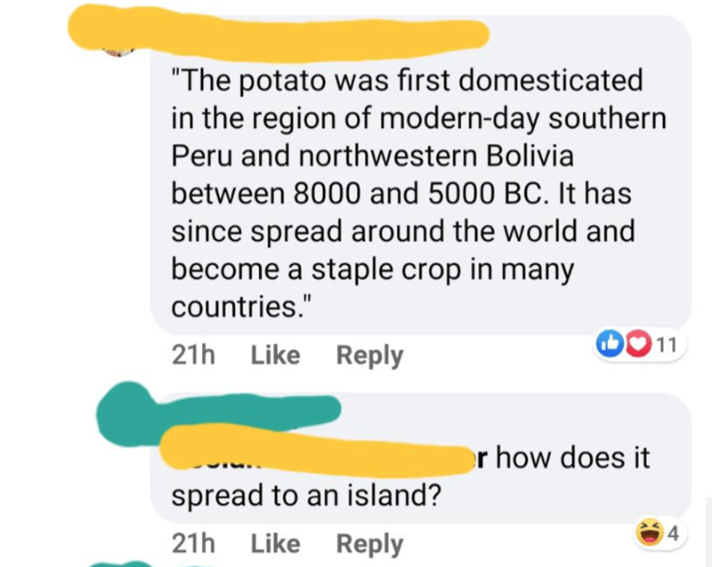 "Text - ""The potato was first domesticated in the region of modern-day southern Peru and northwestern Bolivia between 8000 and 5000 BC. It has since spread around the world and become a staple crop in many countries."" 11 21h Like Reply r how does it spread to an island? 21h Like Reply"