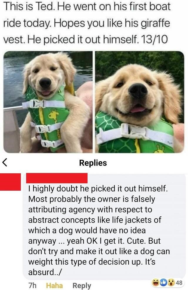 Dog - This is Ted. He went on his first boat ride today. Hopes you like his giraffe vest. He picked it out himself. 13/10 Replies I highly doubt he picked it out himself. Most probably the owner is falsely attributing agency with respect to abstract concepts like life jackets of which a dog would have no idea anyway ... yeah OK I get it. Cute. But don't try and make it out like a dog can weight this type of decision up. It's absurd../ 48 7h Haha Reply
