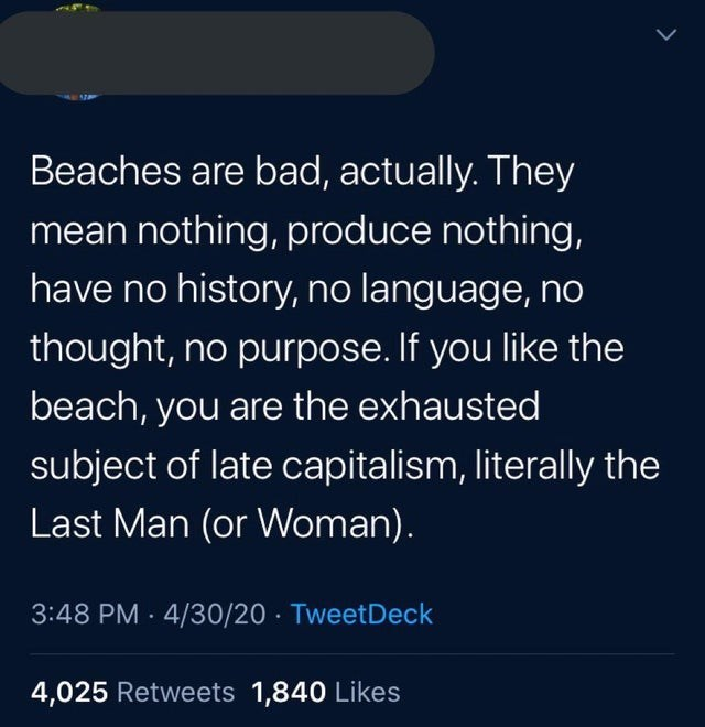 Text - Beaches are bad, actually. They mean nothing, produce nothing, have no history, no language, no thought, no purpose. If you like the beach, you are the exhausted subject of late capitalism, literally the Last Man (or Woman). 3:48 PM · 4/30/20 · TweetDeck 4,025 Retweets 1,840 Likes