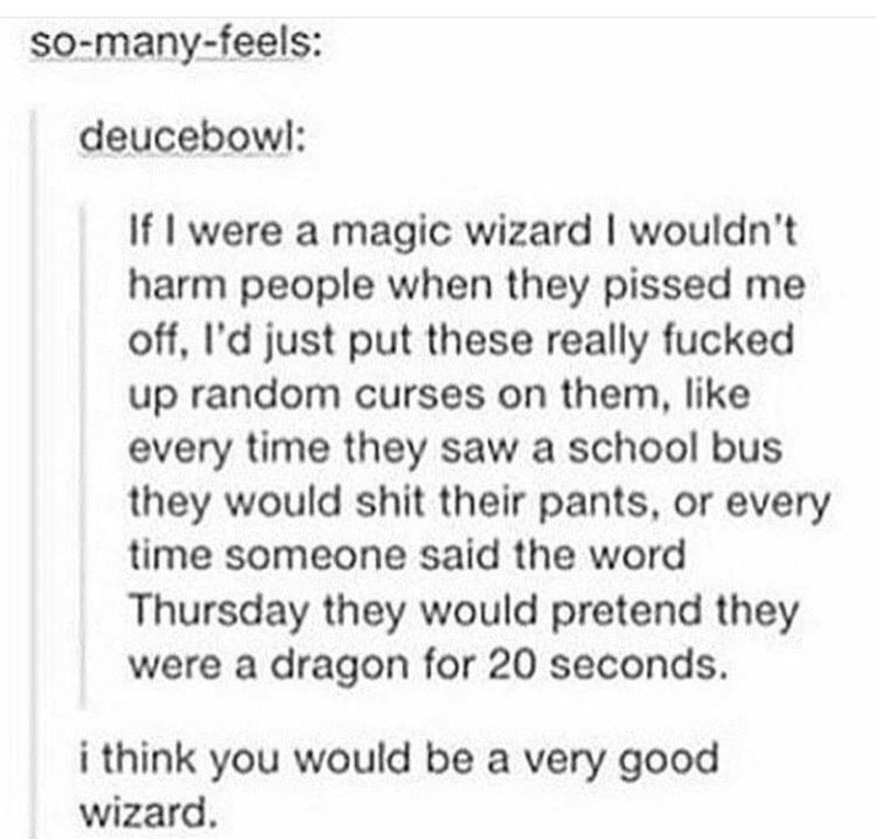 Text - so-many-feels: deucebowl: If I were a magic wizard I wouldn't harm people when they pissed me off, l'd just put these really fucked up random curses on them, like every time they saw a school bus they would shit their pants, or every time someone said the word Thursday they would pretend they were a dragon for 20 seconds. i think you would be a very good wizard.