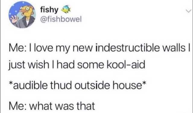 Text - fishy @fishbowel Me: I love my new indestructible walls I just wish I had some kool-aid *audible thud outside house* Me: what was that