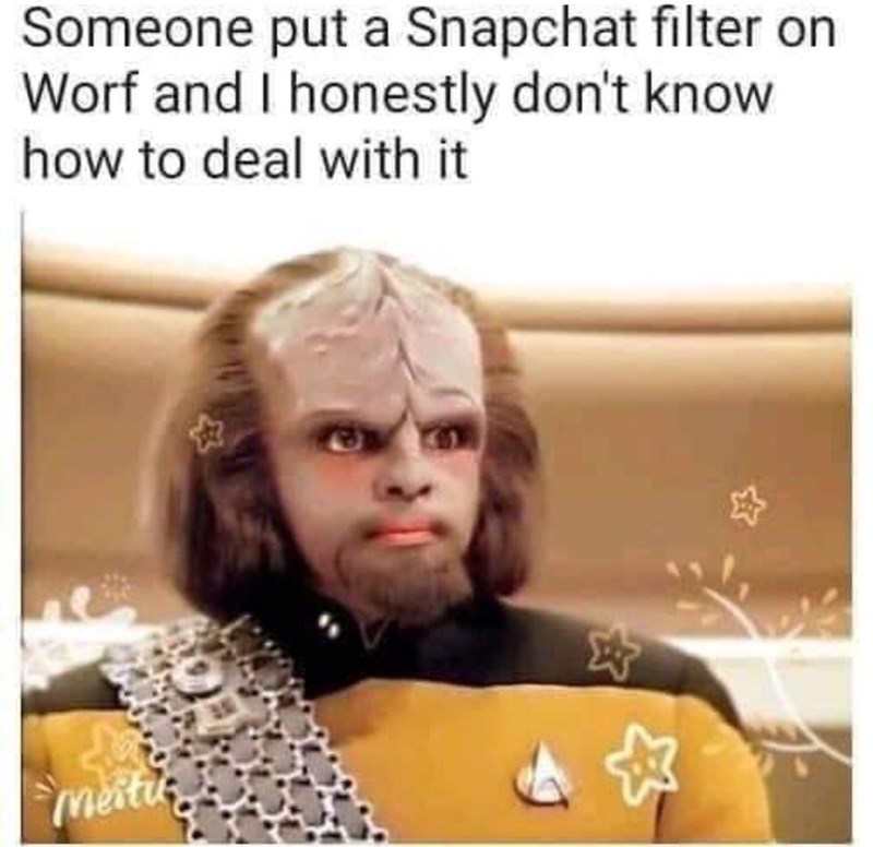 Text - Someone put a Snapchat filter on Worf and I honestly don't know how to deal with it meiti