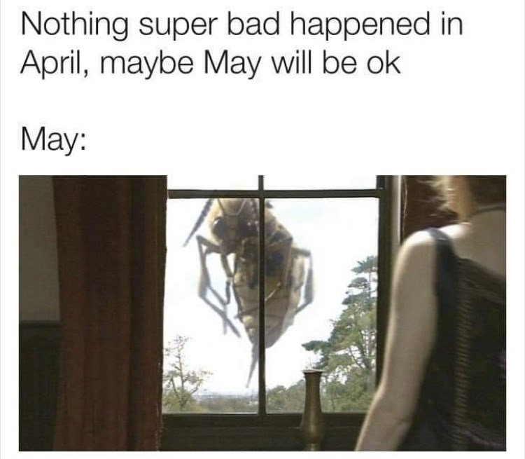 Text - Nothing super bad happened in April, maybe May will be ok May: