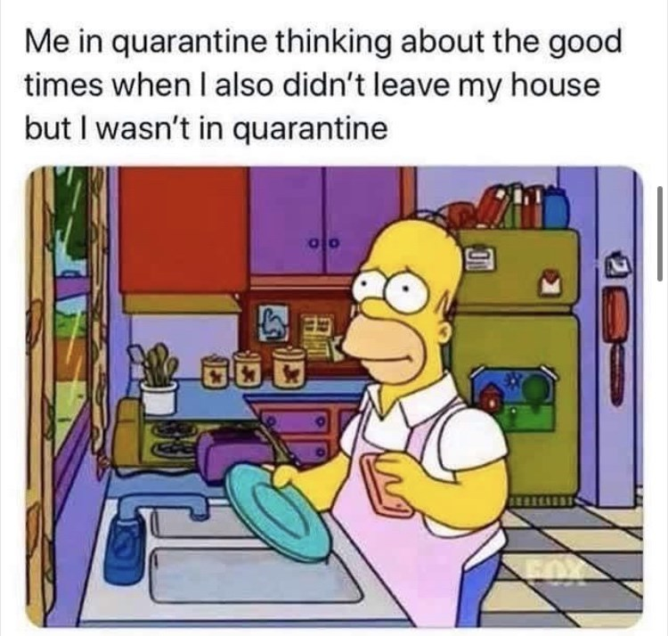Cartoon - Me in quarantine thinking about the good times when I also didn't leave my house but I wasn't in quarantine
