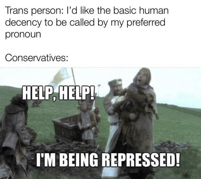 Adaptation - Trans person: l'd like the basic human decency to be called by my preferred pronoun Conservatives: HELP, HELP! I'M BEING REPRESSED!