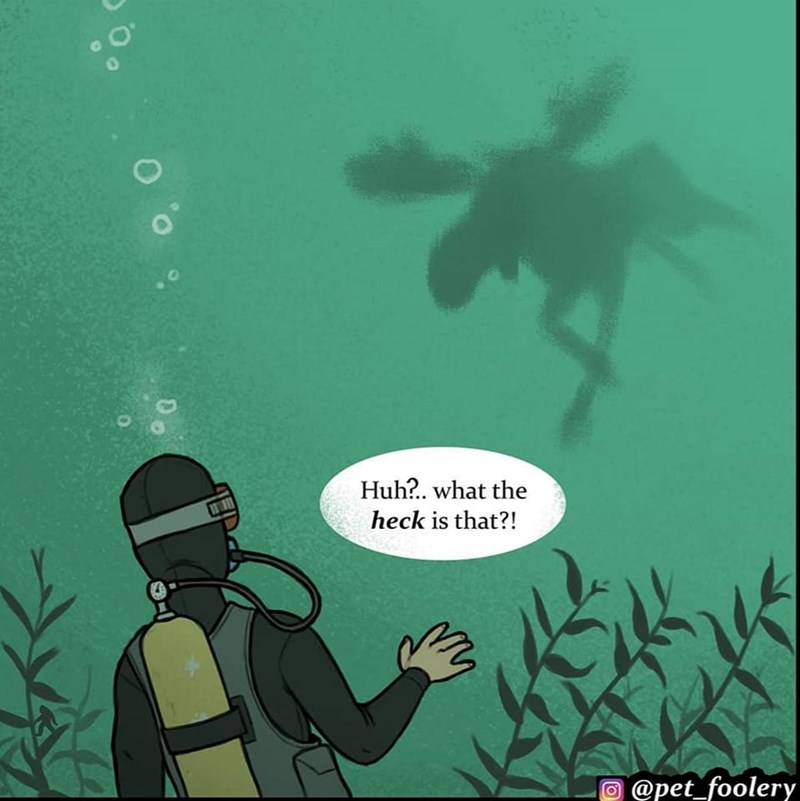 funny comic moose ocra