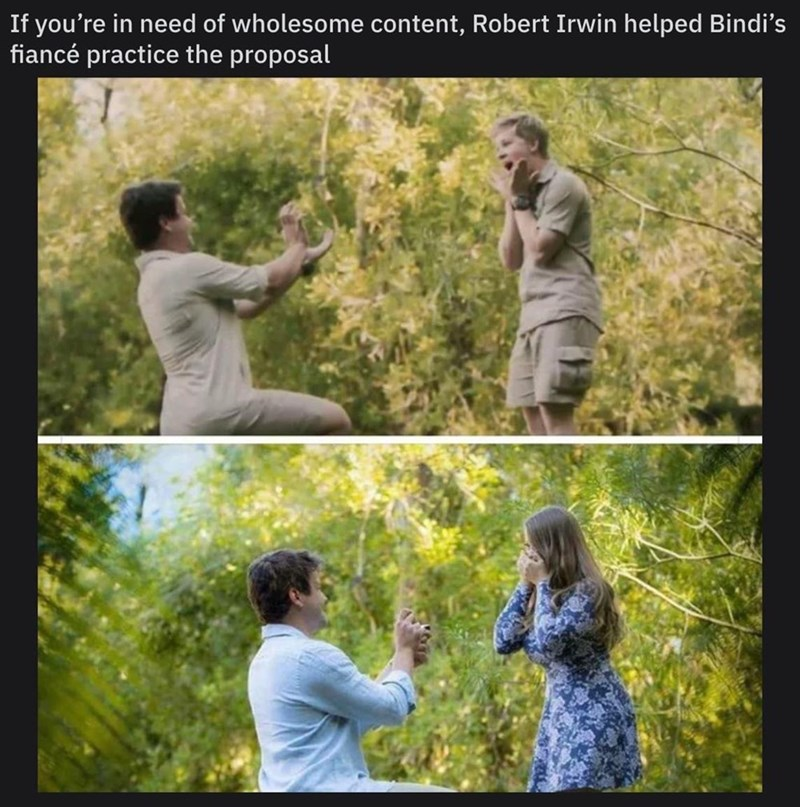 People in nature - If you're in need of wholesome content, Robert Irwin helped Bindi's fiancé practice the proposal