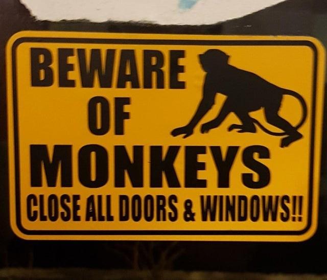 Signage - BEWARE OF A MONKEYS CLOSE ALL DOORS&WINDOWS!