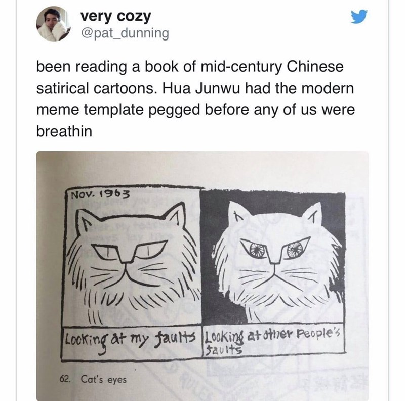 Cat - very cozy @pat_dunning been reading a book of mid-century Chinese satirical cartoons. Hua Junwu had the modern meme template pegged before any of us were breathin Nov. 1963 Looking at my faults Looking at otner People's Sauits RU 62. Cat's eyes