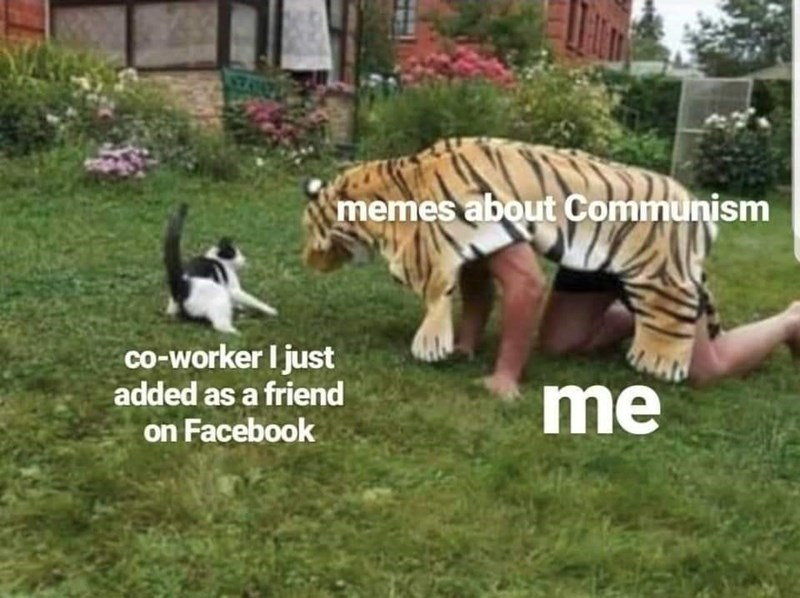 Mammal - memes about Communism co-worker I just added as a friend me on Facebook
