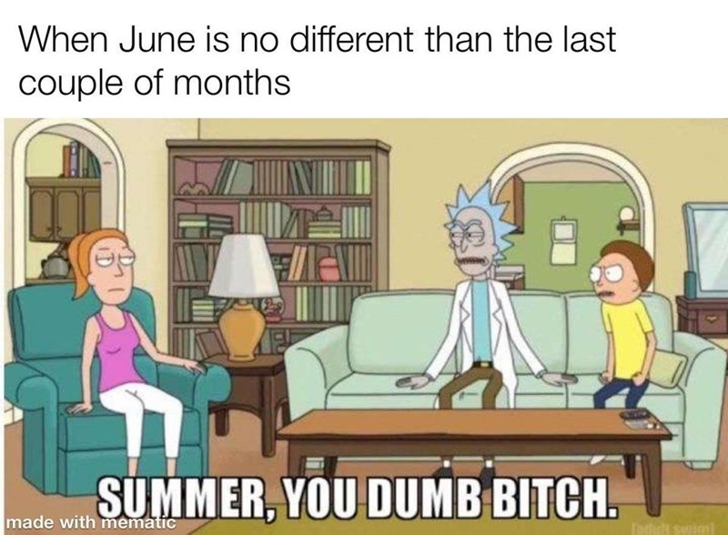 Cartoon - When June is no different than the last couple of months del SUMMER, YOU DUMB BITCH. made with mematic Swiml