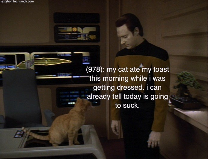 Cat - textsfromtng.tumbir.com (978): my cat ate my toast this morning while i was getting dressed. i can already tell today is going to suck.