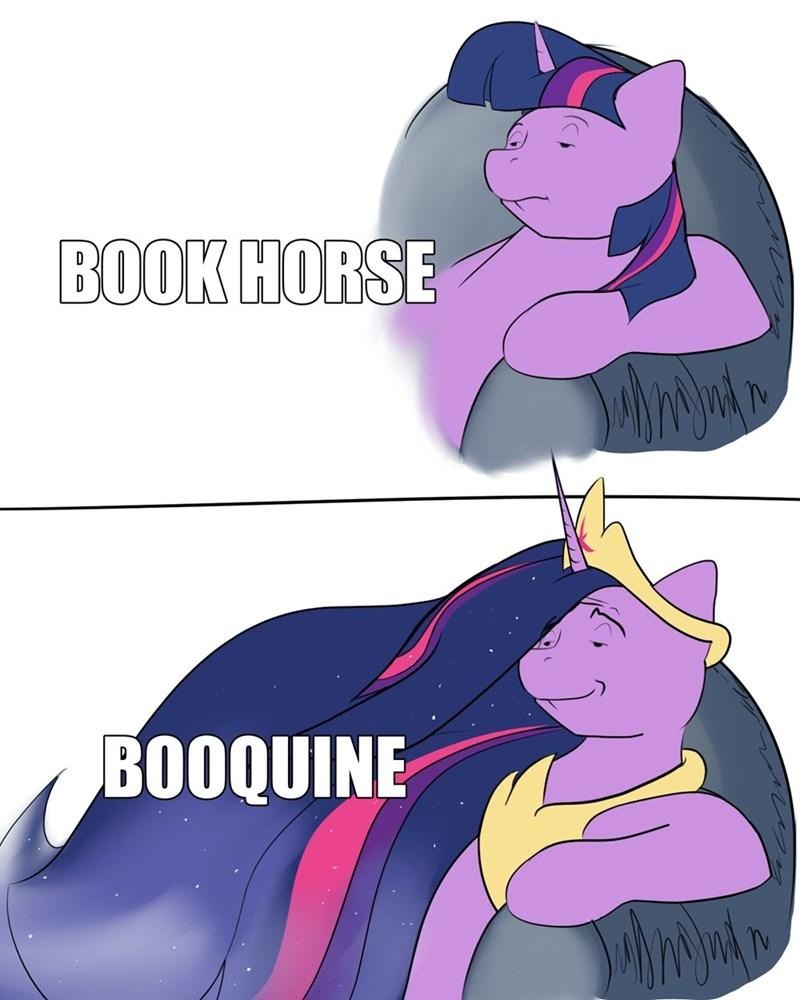 tuxedo winnie the pooh twilight sparkle Memes rocket-lawnchair - 9482004992