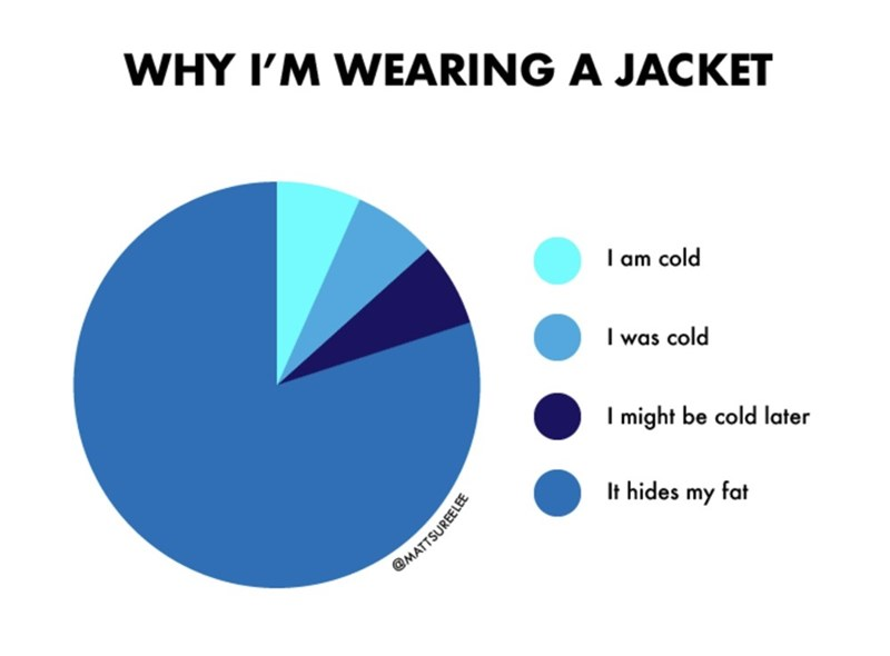 Text - WHY I'M WEARING A JACKET I am cold I was cold I might be cold later It hides my fat @MATTSUREELEE