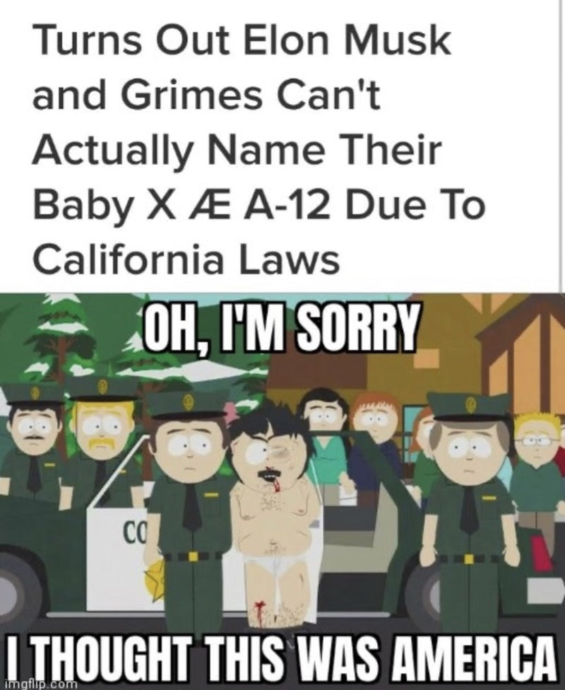 Cartoon - Turns Out Elon Musk and Grimes Can't Actually Name Their Baby X Æ A-12 Due To California Laws OH, I'M SORRY CO | THOUGHT THIS WAS AMERICA imgflip.com