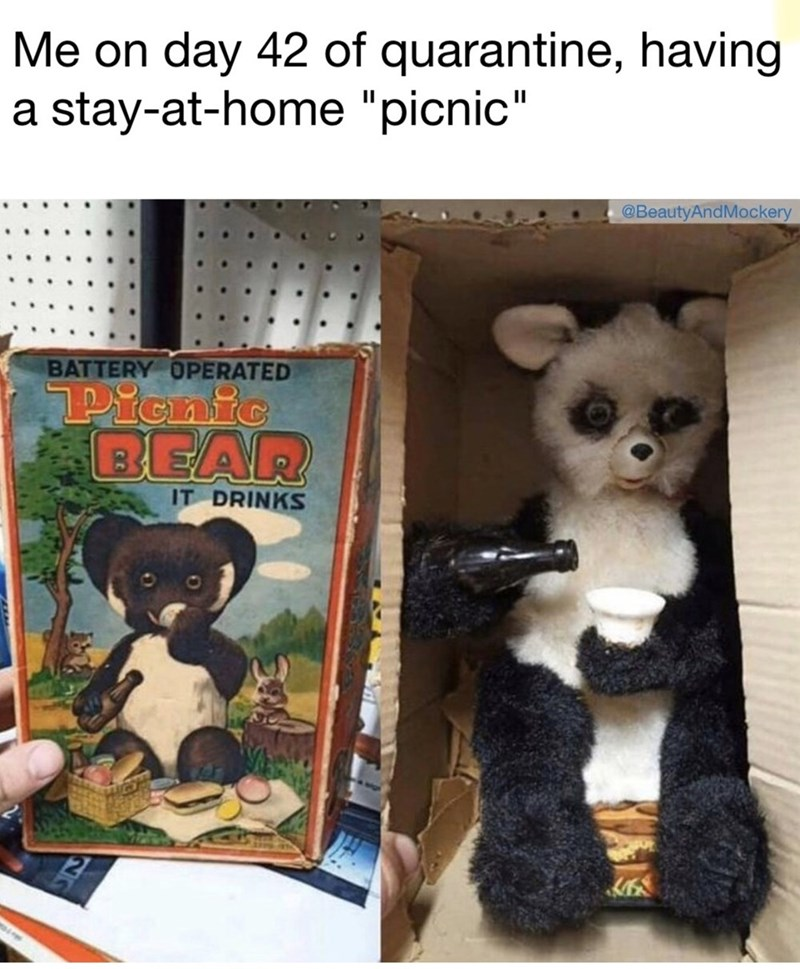 """Toy - Me on day 42 of quarantine, having a stay-at-home """"picnic"""" @BeautyAndMockery BATTERY OPERATED Picnic BEAR IT DRINKS"""