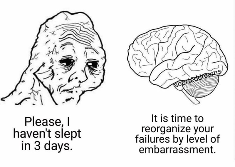 Brain - aborteddreams Please, I haven't slept in 3 days. It is time to reorganize your failures by level of embarrassment.