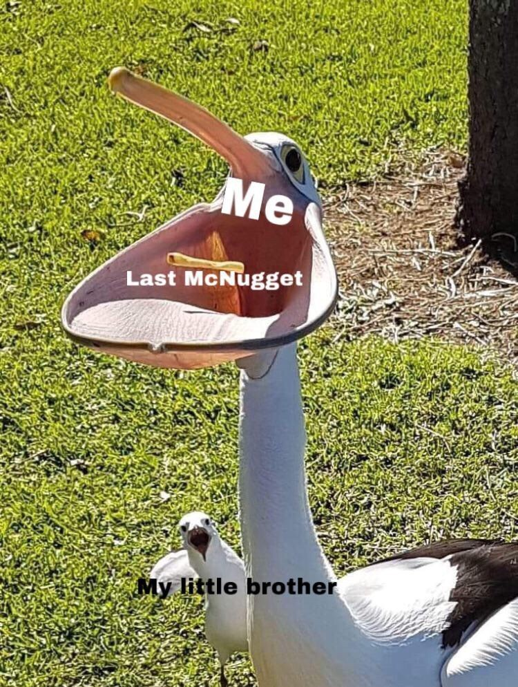 Grass - Me Last McNugget My little brother