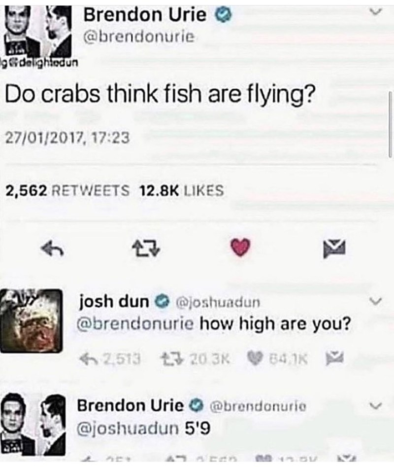 Text - Brendon Urie @brendonurie gdeightedun Do crabs think fish are flying? 27/01/2017, 17:23 2,562 RETWEETS 12.8K LIKES josh dun O @joshuadun @brendonurie how high are you? 62,513 t 20 3K B4,1K Brendon Urie O @brendonurie @joshuadun 5'9