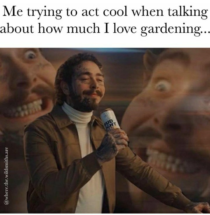 Text - Me trying to act cool when talking about how much I love gardening... BUD GHT 176 @where.the.wildsmiths.are