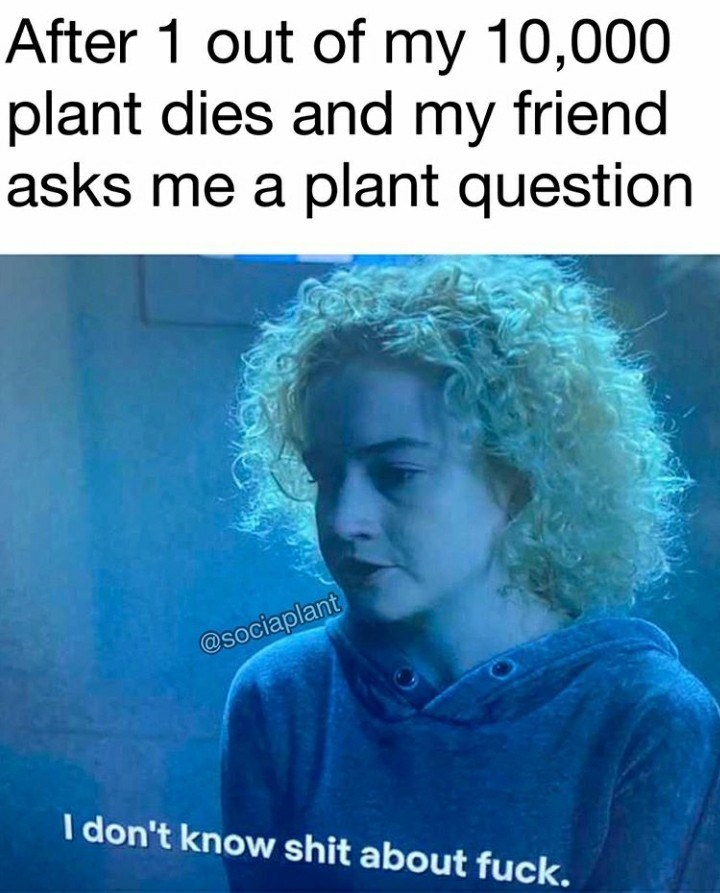 Text - After 1 out of my 10,000 plant dies and my friend asks me a plant question @sociaplant I don't know shit about fuck.