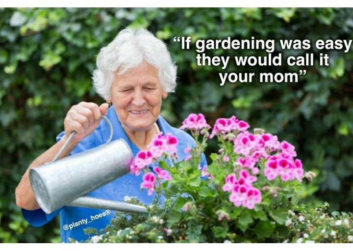 """Flower - """"If gardening was easy they would call it your mom"""" @planty_hoes®"""