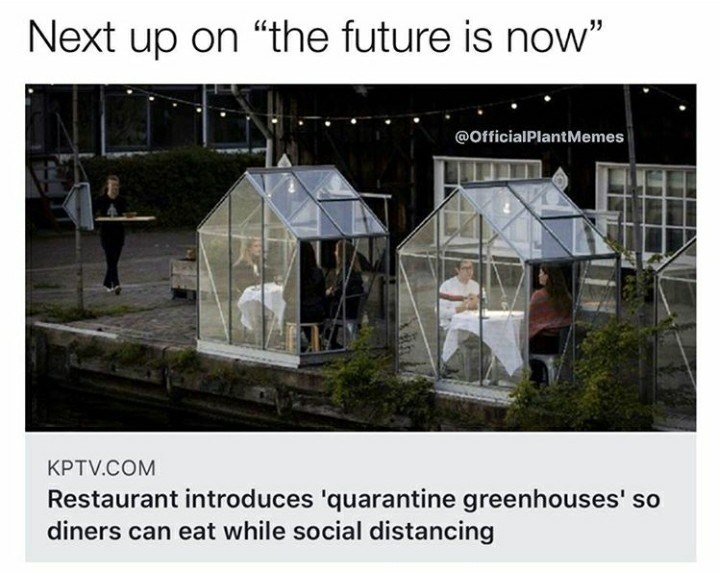 """Greenhouse - Next up on """"the future is now"""" @OfficialPlantMemes KPTV.COM Restaurant introduces 'quarantine greenhouses' so diners can eat while social distancing"""