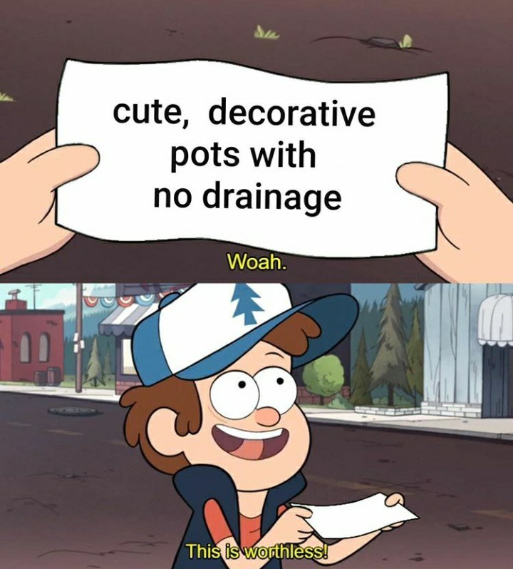 Cartoon - cute, decorative pots with no drainage Woah. This is worthless!