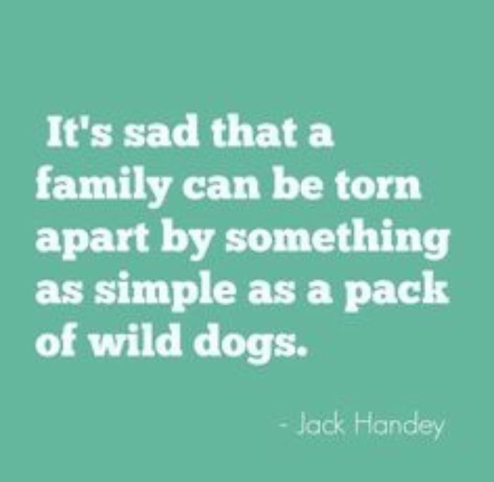 Text - It's sad that a family can be torn apart by something as simple as a pack of wild dogs. - Jack Handey