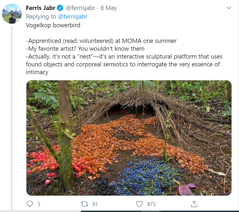 """Soil - Ferris Jabr O @ferrisjabr · 8 May Replying to @ferrisjabr Vogelkop bowerbird -Apprenticed (read: volunteered) at MOMA one summer -My favorite artist? You wouldn't know them -Actually, it's not a """"nest""""-it's an interactive sculptural platform that uses found objects and corporeal semiotics to interrogate the very essence of intimacy 27 91 873"""