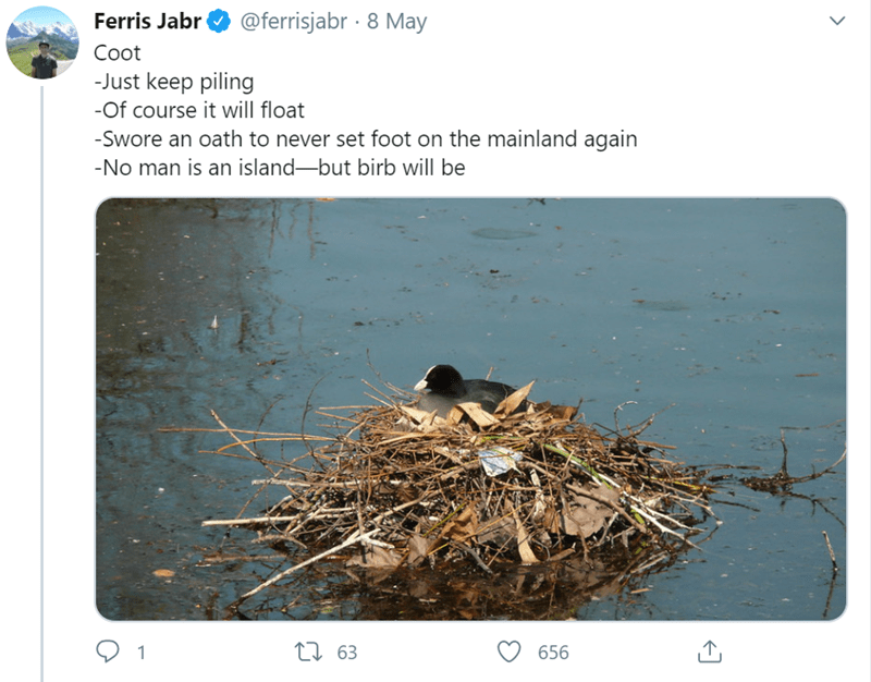 Bird nest - Ferris Jabr @ferrisjabr · 8 May Coot -Just keep piling -Of course it will float -Swore an oath to never set foot on the mainland again -No man is an island-but birb will be 27 63 656
