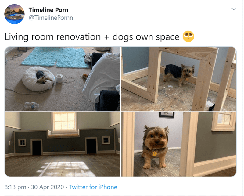 Product - Timeline Porn @TimelinePornn Living room renovation + dogs own space 8:13 pm · 30 Apr 2020 · Twitter for iPhone