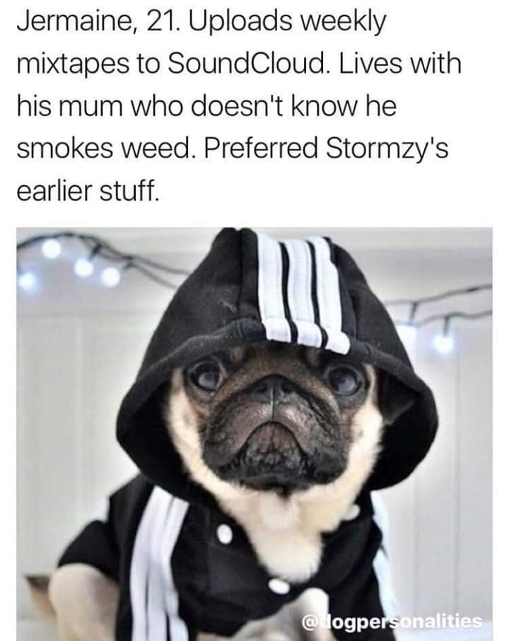 Pug - Jermaine, 21. Uploads weekly mixtapes to SoundCloud. Lives with his mum who doesn't know he smokes weed. Preferred Stormzy's earlier stuff. @ logpersonalities