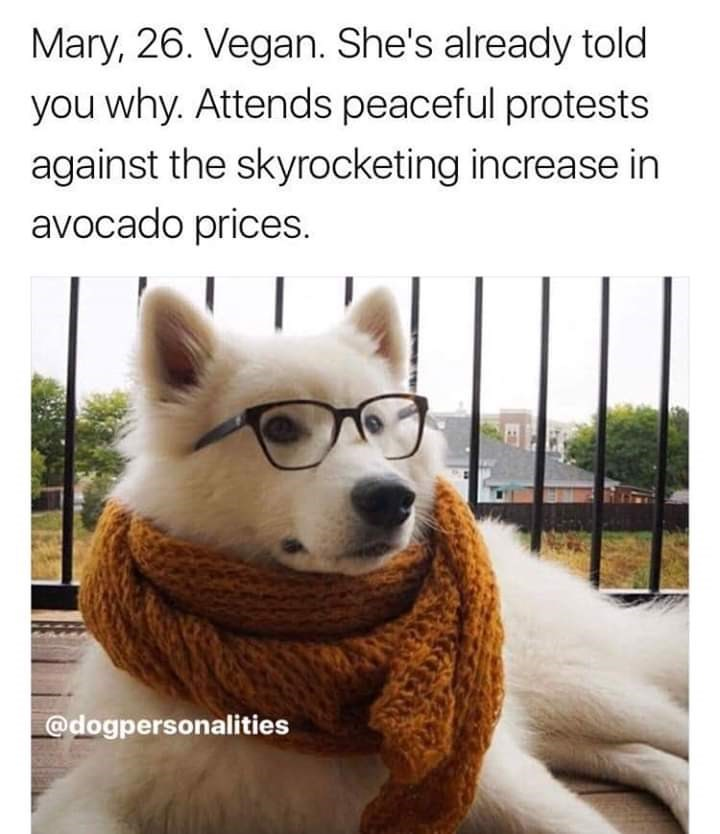 Mammal - Mary, 26. Vegan. She's already told you why. Attends peaceful protests against the skyrocketing increase in avocado prices. @dogpersonalities