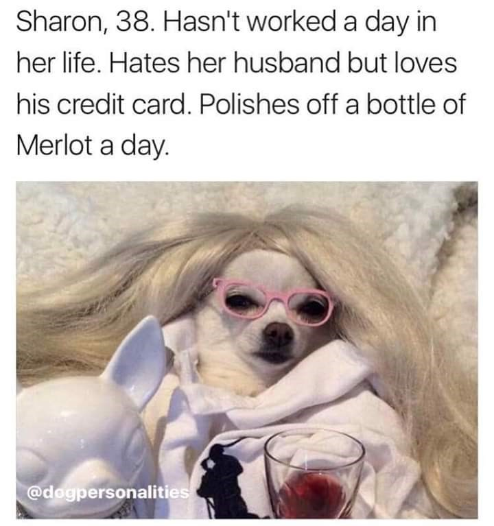 Dog - Sharon, 38. Hasn't worked a day in her life. Hates her husband but loves his credit card. Polishes off a bottle of Merlot a day. @dogpersonalities